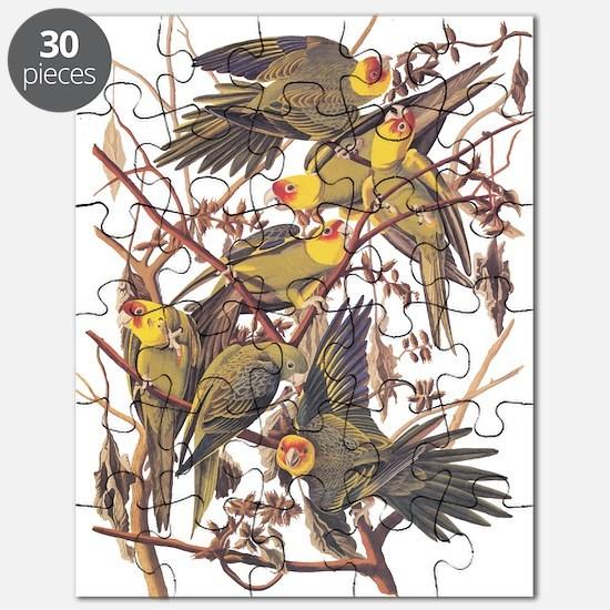 Carolina Parakeets Vintage Reproduction Puzzle