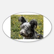 Skye Terrier In Buttercups Oval Decal