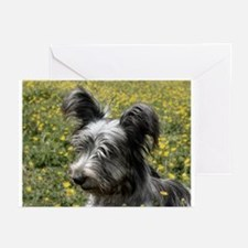 Skye Terrier In Buttercups Greeting Cards (Package