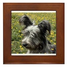 Skye Terrier In Buttercups Framed Tile