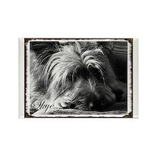 Skye Terrier- Black & White Rectangle Magnet
