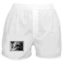 Skye Terrier- Black & White Boxer Shorts