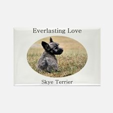 Skye Terrier Puppy - Everlast Rectangle Magnet