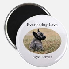 Skye Terrier Puppy - Everlast Magnet