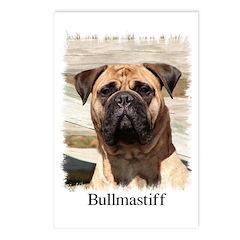 Bullmastiff- Color Head Study Postcards (Package o