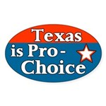 Texas Pro-Choice Bumper Sticker