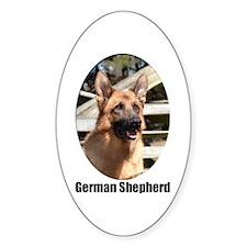 German Shepherd (Color)- Oval Decal