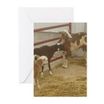 group Greeting Cards (Pk of 10)