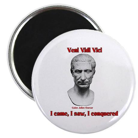 Vini Vidi Vici I Came I Saw I Conquered Magnet