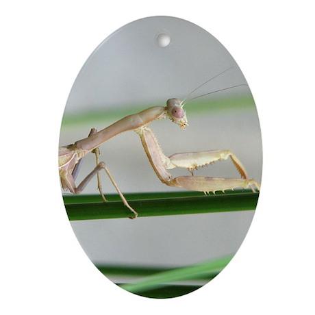 Helaine's Tan Praying Mantis Ornament (Oval)