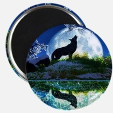 Coyote Moon Magnets