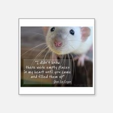 "Cute Fancy rats Square Sticker 3"" x 3"""