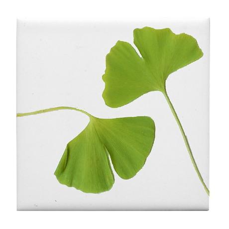 Ginkgo Biloba Leaves Tile Coaster