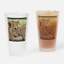 Funny Cat design Drinking Glass