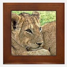 Funny Cat design Framed Tile