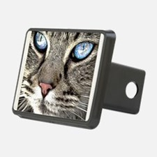 Funny Whiskers the cat Hitch Cover