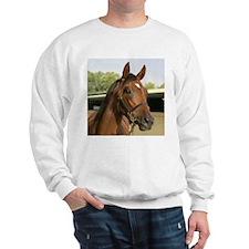 Cute Racehorse Sweatshirt