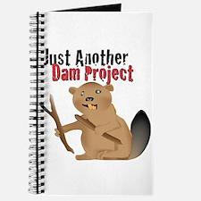 Another Dam Journal