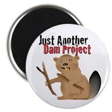 Another Dam Magnet