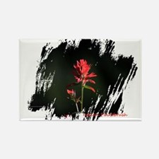 Indian Paintbrush Magnets