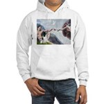 Creation / Eng Springer Hooded Sweatshirt