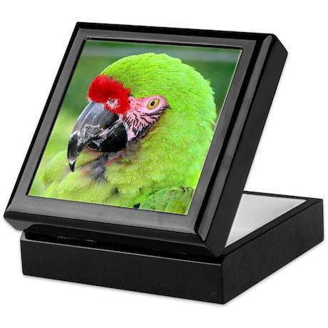 Helaine's Green Macaw Keepsake Box