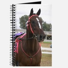 Cool Standardbred horse Journal