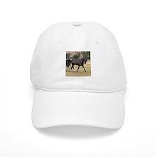 Cute Standardbred horse Baseball Cap