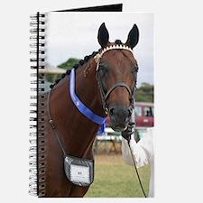 Unique Standardbred horse Journal