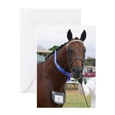 Unique Standardbred horse Greeting Card