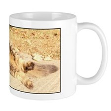 Maine Coon cat tabby rolling Mug