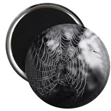 The Spider's Web Magnet