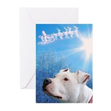 Funny Bull Greeting Cards (Pk of 10)
