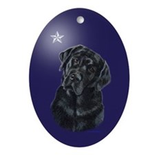 Lola Xmas Star Oval Ornament