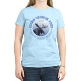 Acadia national park Women's Light T-Shirt