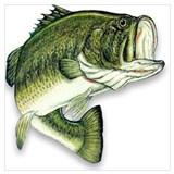 Bass fishing Wrapped Canvas Art
