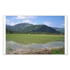 Mountain Paddy at Pres Roxas Rectangle Decal