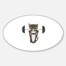 Fitness cat weight lifting Decal