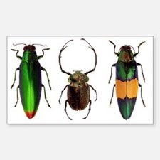 Unique Insects Sticker (Rectangle)