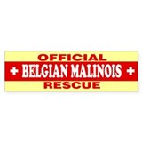 Belgian malinois Single