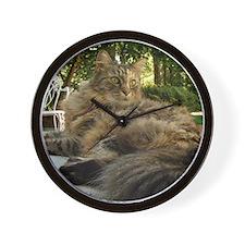 Maine Coon cat bushy tail Wall Clock