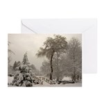 Winter Landscape Photo Greeting Cards (Pk of 10)