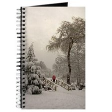 Winter Landscape Photo Journal