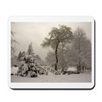 Winter Landscape Photo Mousepad