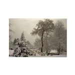 Winter Landscape Photo Rectangle Magnet (100 pack)