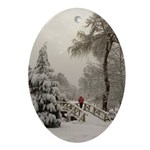 Winter Landscape Photo Oval Ornament