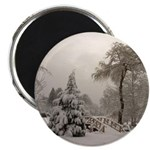 Winter Landscape Photo Magnet