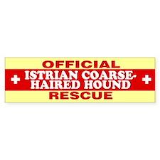 ISTRIAN COARSE-HAIRED HOUND Bumper Bumper Sticker