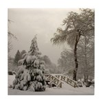 Winter Landscape Photo Tile Coaster