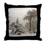 Winter Landscape Photo Throw Pillow